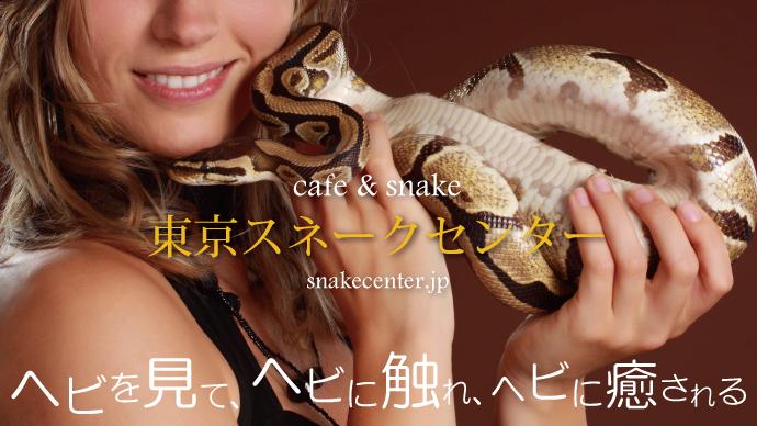 makuake_photo690_03
